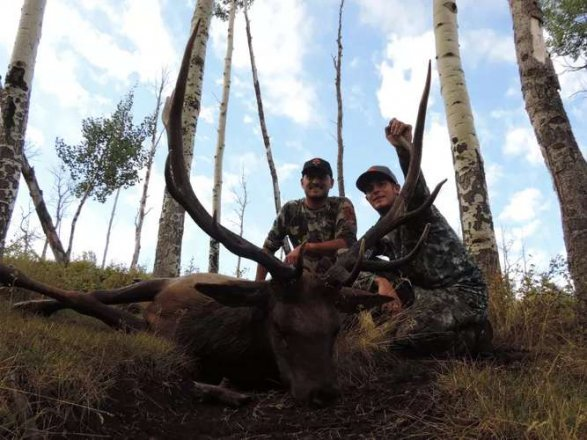 CO Unit 37 OTC Archery Elk Hunt with Private (Semi Guided