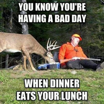 Hunting meme Bad day of hunting?itok=rrXUCj3W 25 of the best hunting memes of all time gohunt