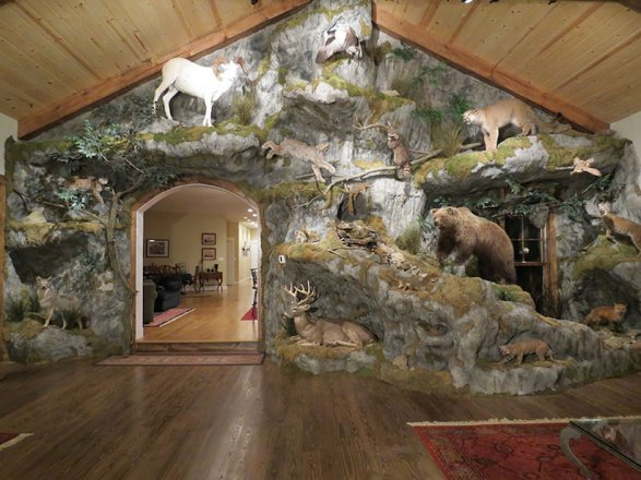 Man Cave Hunting Room : Outdoor themed bedroom nature room decor boys hunting