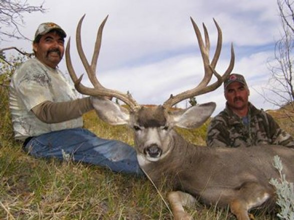 Gt Outfitters Gohunt