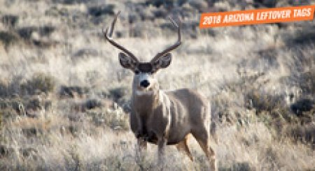 2018 Arizona leftover hunting permit list
