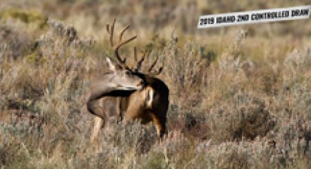 2019 Idaho second controlled hunt drawing tag list