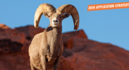 APPLICATION STRATEGY 2019: Nevada Sheep and Mountain Goat