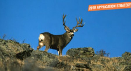 APPLICATION STRATEGY 2019: Wyoming Deer and Antelope