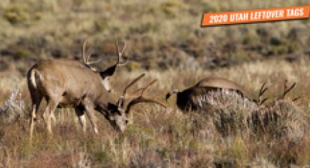 2020 Utah Leftover Hunting Permit List