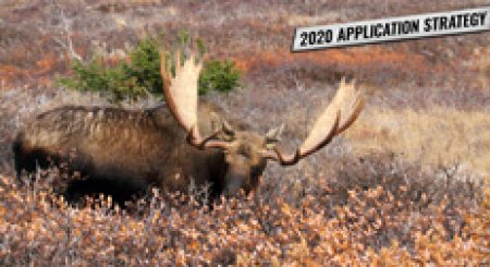 APPLICATION STRATEGY 2020: Wyoming Sheep, Moose, Goat and Bison
