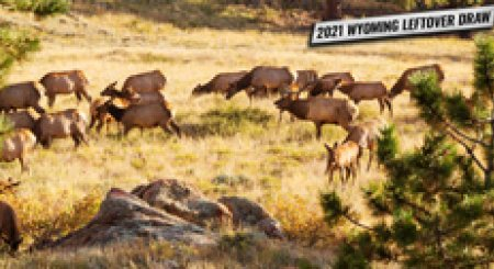 2021 Wyoming leftover draw license list now available