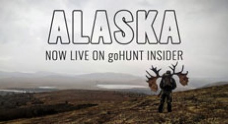 LATEST UPDATE: Alaska hunt research tools now live on INSIDER!