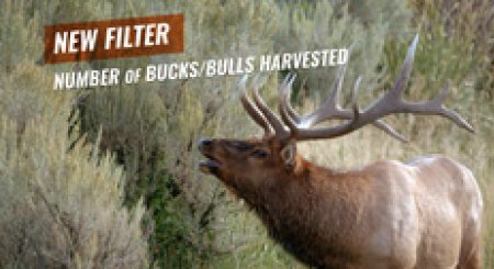 Just Added — Filter by # of bucks/bulls harvested for general hunts in Montana