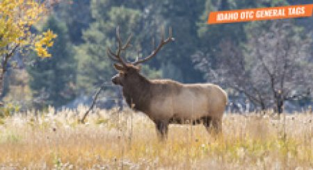 2020 Idaho nonresident OTC hunting tag list
