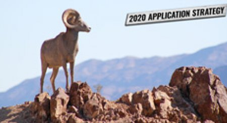 APPLICATION STRATEGY 2020: Nevada Sheep and Mountain Goat