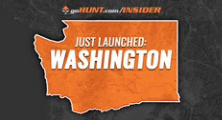 INSIDER Update: Washington is now live!