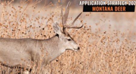 APPLICATION STRATEGY 2021: Montana Deer