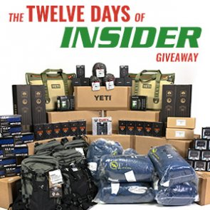 The Twelve Days of INSIDER giveaway