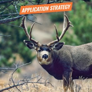 APPLICATION STRATEGY 2018: Arizona Deer, Sheep and Bison
