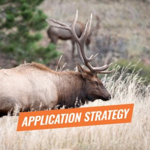 APPLICATION STRATEGY 2018: Arizona Elk
