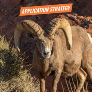 APPLICATION STRATEGY 2018: California Elk and Sheep