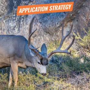 APPLICATION STRATEGY 2018: Colorado Deer