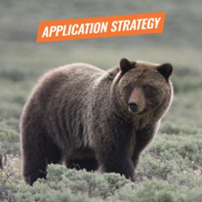 APPLICATION STRATEGY 2018: Idaho and Wyoming Grizzly Bear Hunt