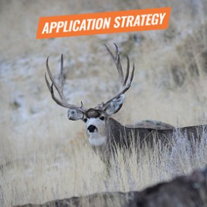 APPLICATION STRATEGY 2018: Idaho Deer