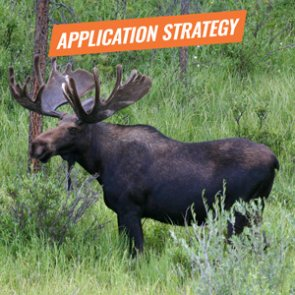 APPLICATION STRATEGY 2018: Idaho Sheep, Moose, Goat