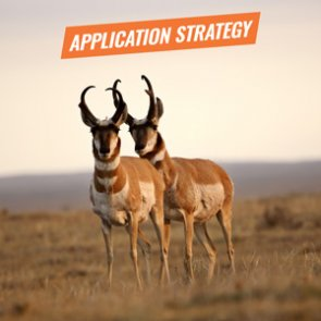 APPLICATION STRATEGY 2018: Montana Antelope