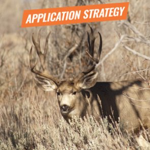 APPLICATION STRATEGY 2018: Montana Deer