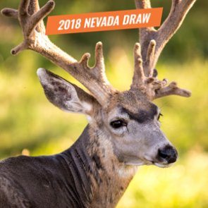 Nevada's 2018 Big Game Draw Happening Today
