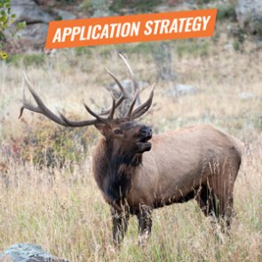 APPLICATION STRATEGY 2018: Nevada Elk