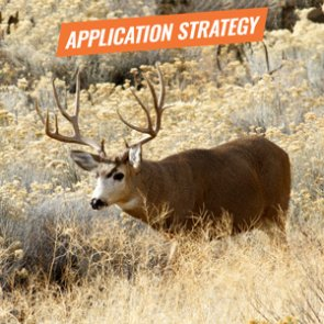 APPLICATION STRATEGY 2018: Nevada Mule Deer