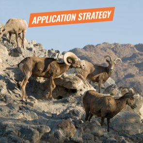 APPLICATION STRATEGY 2018: Nevada Sheep, Mtn Goat, Antelope