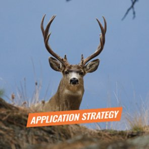 APPLICATION STRATEGY 2018: New Mexico Deer