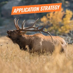 APPLICATION STRATEGY 2018: New Mexico Elk