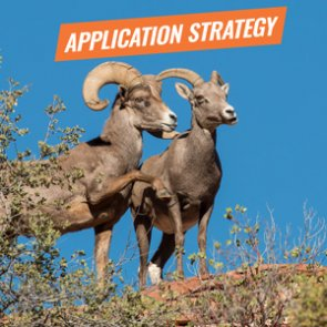 APPLICATION STRATEGY 2018: New Mexico Sheep