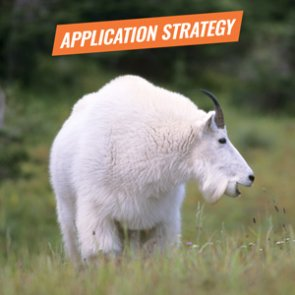 APPLICATION STRATEGY 2018: Oregon Sheep and Mountain Goat