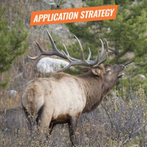 APPLICATION STRATEGY 2018: Oregon Elk and Antelope