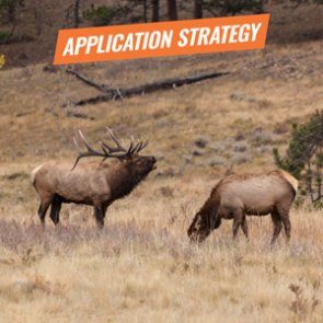 APPLICATION STRATEGY 2018: Wyoming Elk