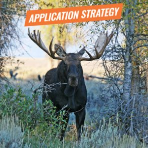APPLICATION STRATEGY 2018: Wyoming Sheep, Moose, Goat, Bison