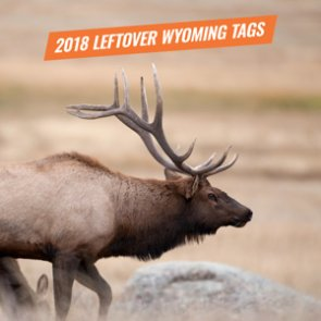 2018 Wyoming leftover license draw now available