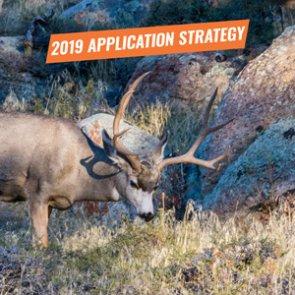APPLICATION STRATEGY 2019: Arizona Deer, Sheep and Bison
