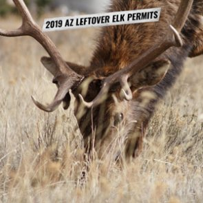 2019 Arizona leftover elk hunting permit list
