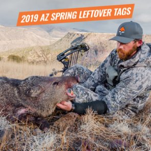 2019 Arizona spring leftover hunting permit list