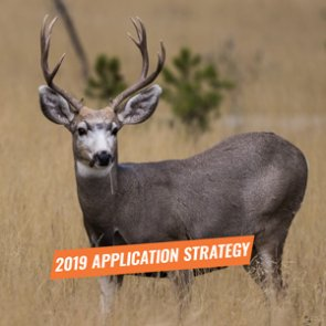 APPLICATION STRATEGY 2019: California Deer and Antelope