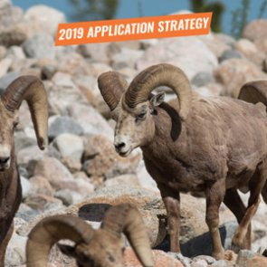 APPLICATION STRATEGY 2019: Colorado Sheep, Moose, Goat
