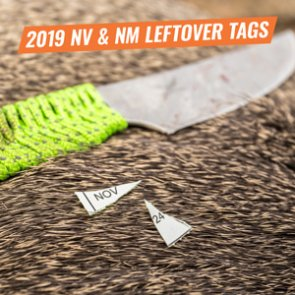 2019 Leftover Tags/Draws: Nevada and New Mexico
