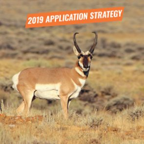 APPLICATION STRATEGY 2019: Montana Antelope