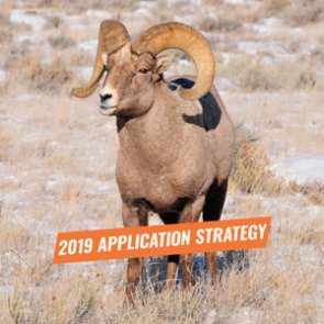 APPLICATION STRATEGY 2019: Montana Sheep, Moose, Goat, Bison
