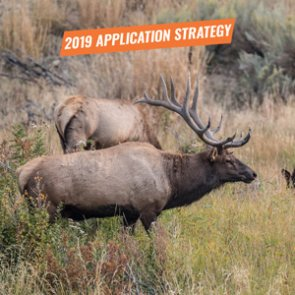APPLICATION STRATEGY 2019: Nevada Elk and Antelope