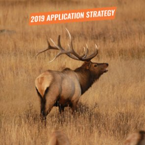 APPLICATION STRATEGY 2019: New Mexico Elk and Deer