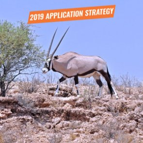 APPLICATION STRATEGY 2019: New Mexico Exotics